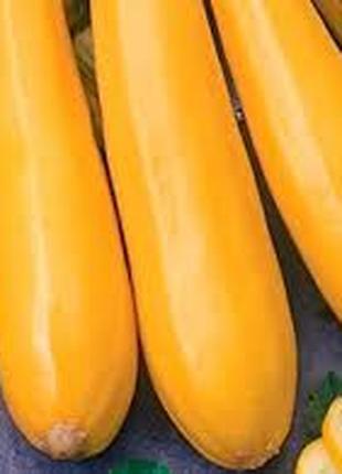Семена кабачка золотинка