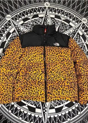 Зимняя куртка supreme x tnf leopard