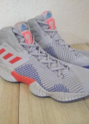 Кросівки  баскетбольні adidas pro bounce f36941