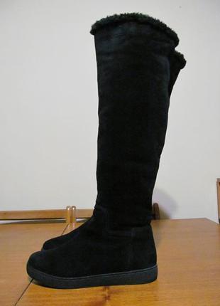 Сапоги, ботфорты elche зима, натуральна кожа
