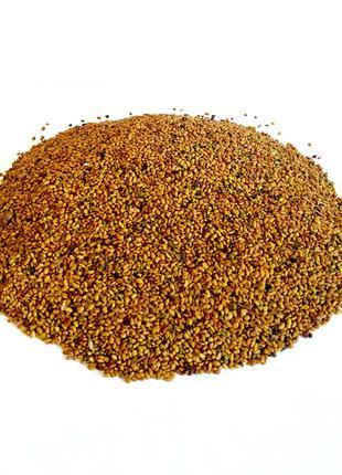 Семена люцерны для проращивания 0,5кг