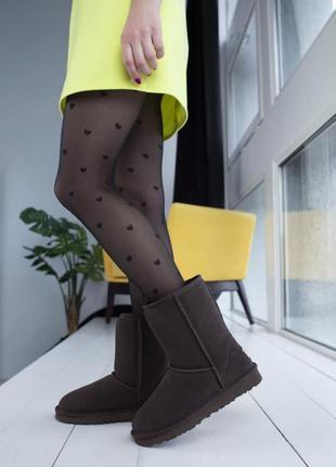 Крутые угги ugg classic mini / сапоги / ботинки / классические