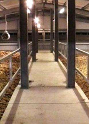 Строительство фер ж/в, ангаров,складов,зерно-овощехранилищ.