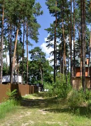 СТ АВИАТОР участок лес Десна 12 сот +15 кВт газ Воропаев Вышго...