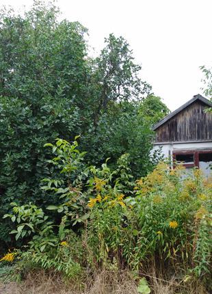 Земельный участок в Сабаров г.Винница
