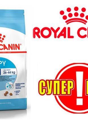 Royal Canin Maxi Puppy 15кг - Сухой корм для щенков крупных пород