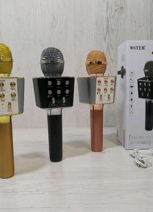 Микрофон музыкальный  WS-1688