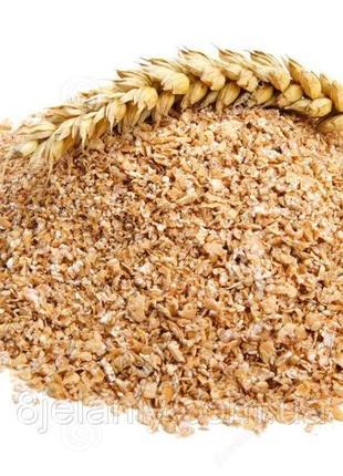 """Отруби пшеничные ТМ """"Королева Муки"""""""