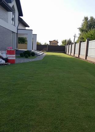 Ландшафтный дизайн, озеленение, рулонный газон