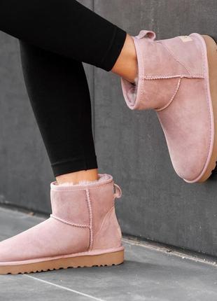 Шикарные женские ботинки ugg classic mini ii