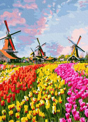 Картина раскраска по номерам (Цветы)