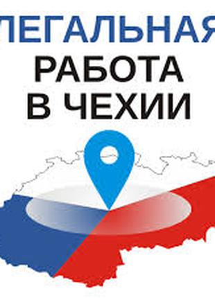 Бесплатная вакансия в Чехию под оформление рабочей визы
