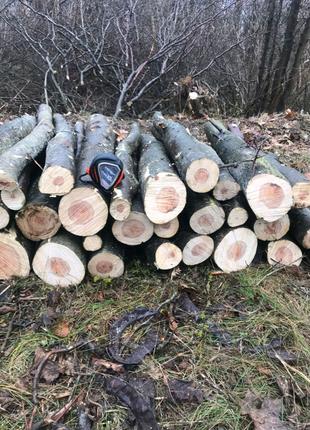Продаём дрова твердых пород Николаев и область