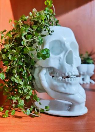Горшок для цветов: кактусов, суккулентов. Подарок