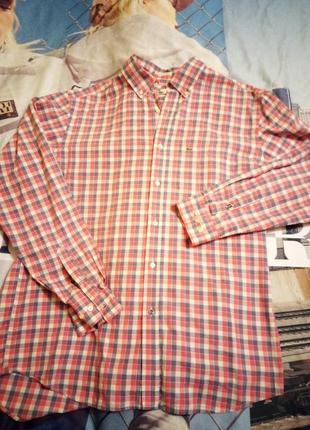 Lacoste сорочка бавовняна