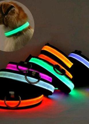 Светящийся ошейник на аккумуляторе (USB зарядка