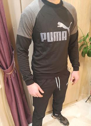 Свитшот мужской Puma
