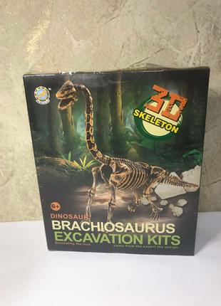 Раскопки динозавр