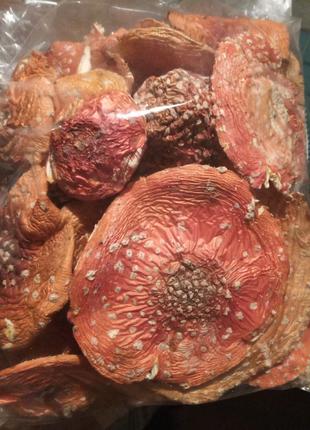 Сушені гриби мухомори.