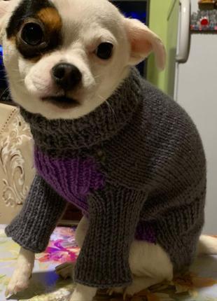 Свитер для собаки/ свитер для собак / одежда для собак / котов
