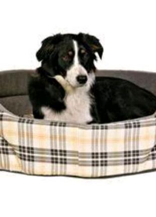 Лежак с бортиком для собак Trixie, 65х55см