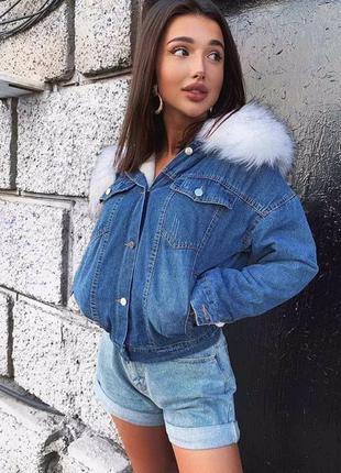 Куртка. джинсовая куртка