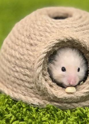 Акция!!!Домик для мелких грызунов.