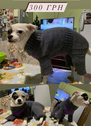 Комбинезон для собак / комбинезон для котов / одежда для собак