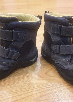 Зимние сапоги, термо ботинки ecco 25р