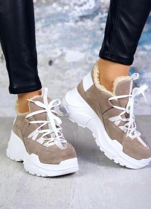 Натуральная замша зимние замшевые кроссовки на меху на массивн...