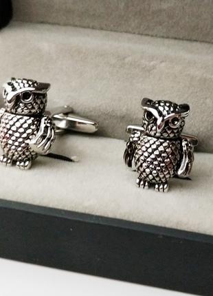 Запонки сова совята совы сови в коробочке подарок оригинальный