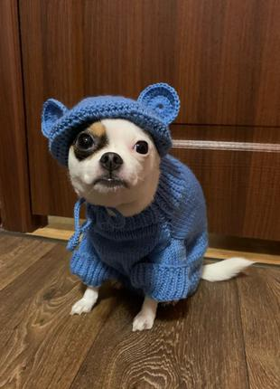Одежда для собак / одежда для котов / шапка для собак / для котов