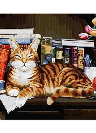 """Картина по номерам """" кот на книжной полке """" 40*50см gx4142"""
