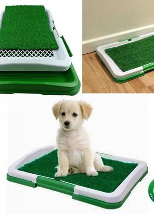 Туалет для собак Puppy Potty Pad 47х34х6 см Green [10/10]