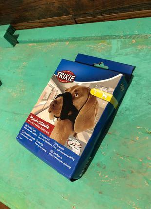 СУПЕРЦІНА! Новий намордник для собак середніх розмірів