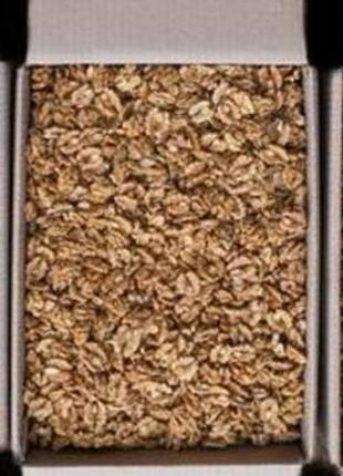 Оптовые поставки ядра грецкого ореха под заказ, Экспорт
