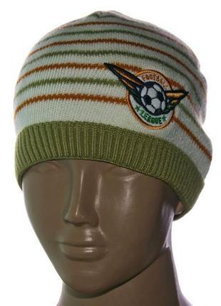 Теплая демисезонная шапка для мальчика