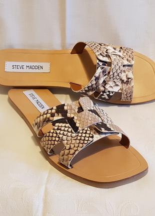 Кожаные шлепанцы Steve Madden Sicily snake змея 9,5US 40,5EU 26,5