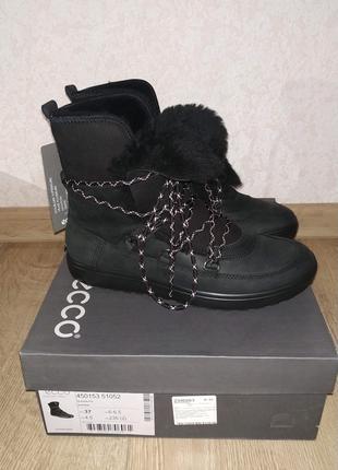 Зимние женские ботинки, сапоги ECCO SOFT 7 TRED 37 размер