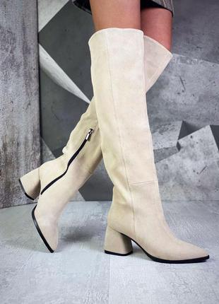 Шикарные женские замшевые бежевые остроносые сапоги ботфорты