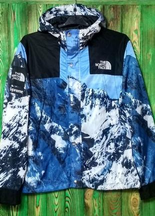 Куртка Supreme The North Face Mountain Parka Jacket