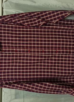 Рубашка мужская с длинным рукавом размер 56 58 хлопок котон