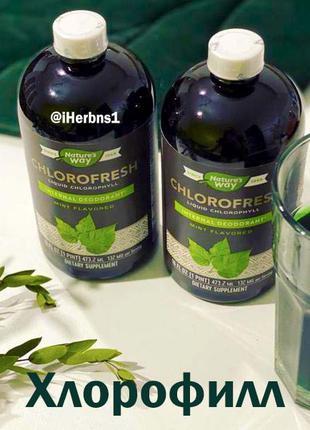 Жидкий хлорофилл- природный дезодорант и мощный антиоксидант
