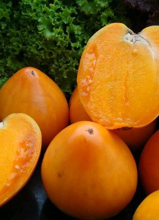 Томат Хурма (семена 20 шт) 3 грн