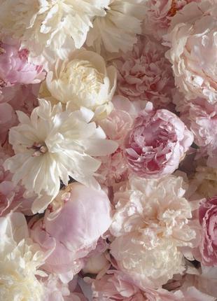 Фотообои Престиж Цветочный букет №50 влагостойкие