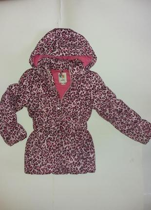 Куртка осенняя Ostin для девочки рост116
