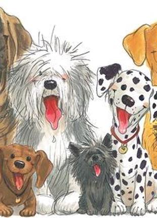Передержка собак Одесса
