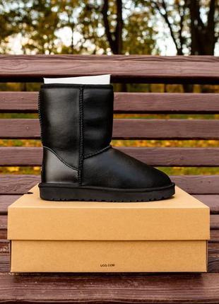 Женские зимние сапоги ugg classic short leather