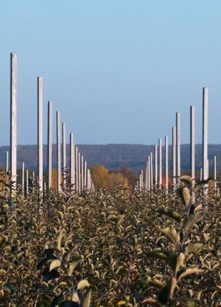 Продам бетонные столбики для садов, виноградников, шпалер, оград