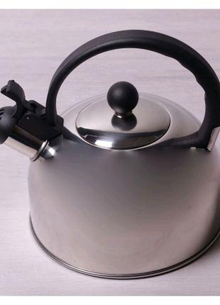 Чайник нержавеющий Kamille - 2,5 л